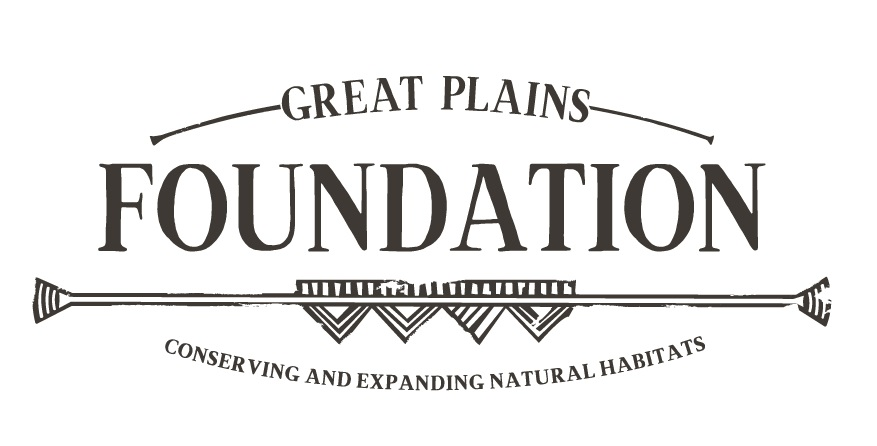 GP-Foundation